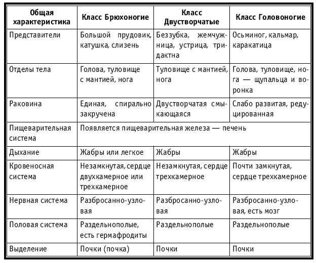 Учебник русского языка 3 класс 2 часть бунеев читать онлайн